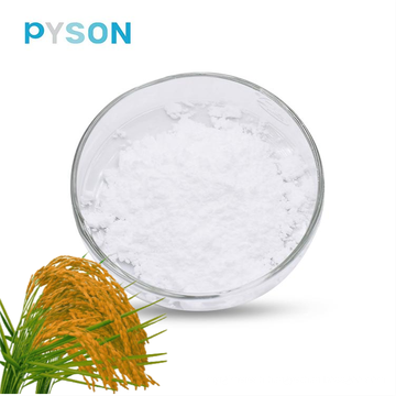 Raw Material Gamma Oryzanol 99% Cas No 11042-64-1