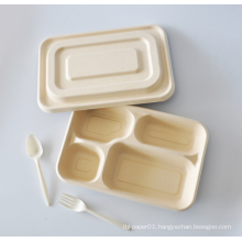sugarcane bagasse food container pulp box 4 compartment 3 5 7 com division saladier