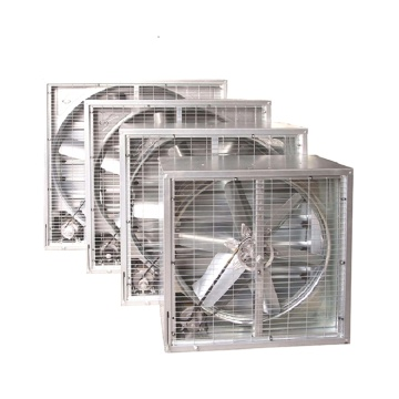 Poultry Factory Ventilation Exhaust Fan
