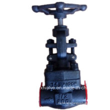 800lb Forged Carbon Steel A105 Thread End NPT Globe Valve