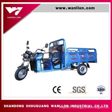 Tricycle électrique de boîte de cargaison de 650W ferme