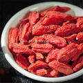 Sampel percuma Low Pestcide Goji