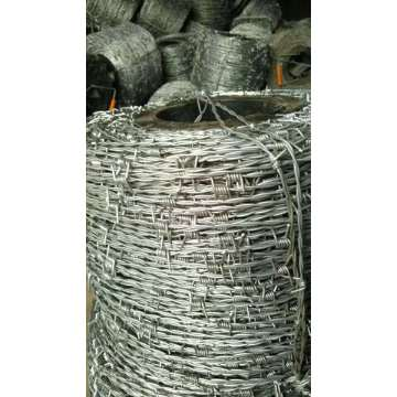 10kgs / roll Double Reversed Twisted Barbed Wire