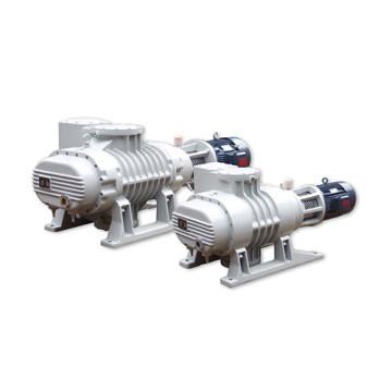 Industrial Roots Vacuum Pumps