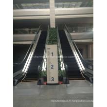 Escaliers d'intérieur ou d'extérieur de type mince