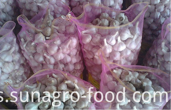 Bagged White Garlic