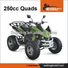 ATV Quad/Quad Bike/250CC ATV Kawasaki Kunststoff-Körper