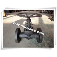 Válvula de aço forjada A105 Globe (J41Y)
