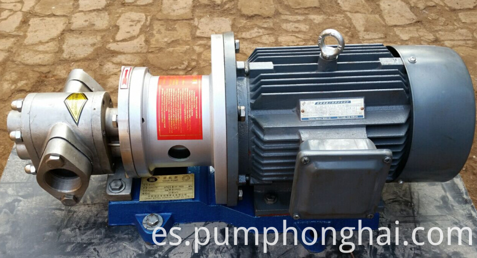 magnetic drive gear pump