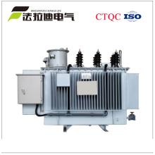 Transformador auto eléctrico del voltaje del paso del aumentador de voltaje 11kv