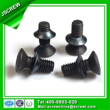 Torx Flat Head Black Anti-Theft Screw