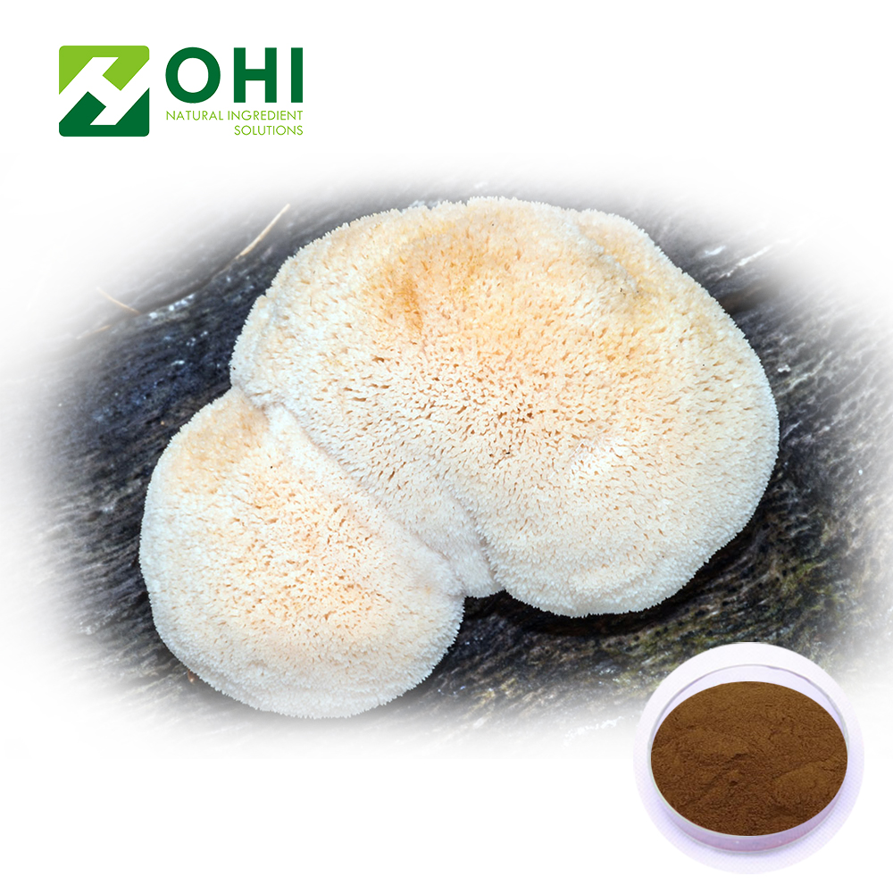 Hericium erinaceus extracts powder