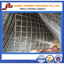 30 Mesh Square Wire Mesh (20 years professional experience factory) (Huge