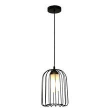 Metal Round Bird Cage Parrot Cage ceiling lamp