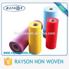 Materia prima de la materia textil casera de Guangdong Ruixin no tejido