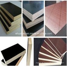 Betonschalung / Schalungsfolie aus Sperrholz mit Pappelkern