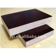 shutter plywood 1220*2440*12mm