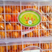 Qualidade superior de mel fresco bebê mandarim