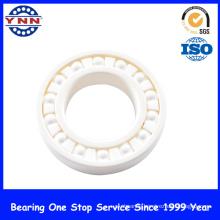 China Full Si3n4 Ceramic Ball Bearing (6006 6206 6306)