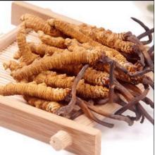 Medicinsk tillägg Cordyceps Sinensis Polysackarider> 40%