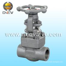 Válvula de porta de aço forjado F51 (Z61H)