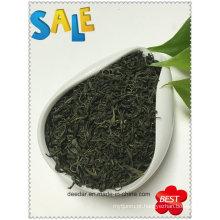 Chá verde mais vendido com Euro Standard