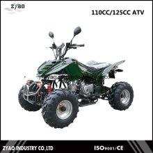 EWG ATV, EPA ATV, CVT ATV