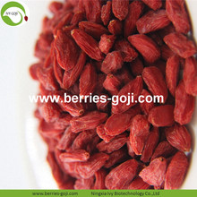 Alimentation en gros Super Food Nutrition Zhongning Goji