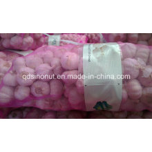 Ajo blanco chino 10kg 20kg bolsa de malla