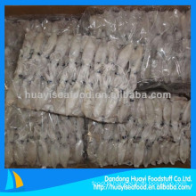 frozen whole round loligo squid