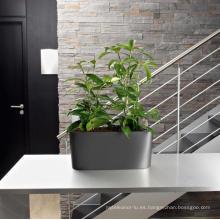 (BC-F1034) Diseño de moda de plástico auto-riego Flower Pot