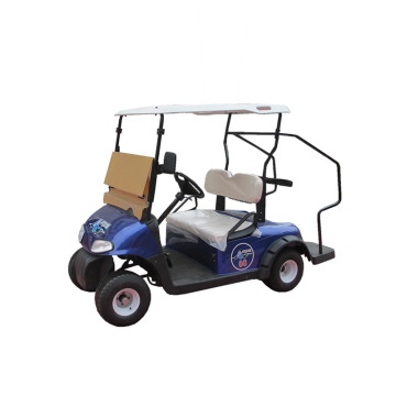 2 seaters gas golf carts for sale