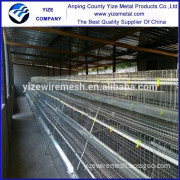 chicken farm lighting/uae chicken farm poultry equipment for sale/chicken egg poultry farm equipment