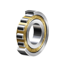 Cylindrial Roller Bearings NJ2300 Series