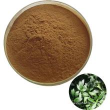 The factory supplies 100% natural Folium Isatidis P.E