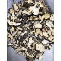 Top Quality Herb Medicine Polyporus