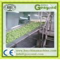 Vegetable Individual Quick Freezing Machine