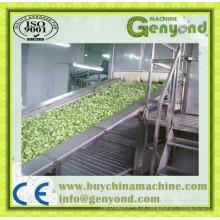 Máquina de congelação rápida individual de vegetais