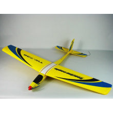 2012 Hot and new Soaring eagle TW 738 rc hobby