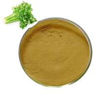 High quality natural bulk celery extract powder apigenin 1.2% 98% dried celery root extract powder