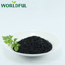 Engrais organique hydrosoluble à haute teneur en eau