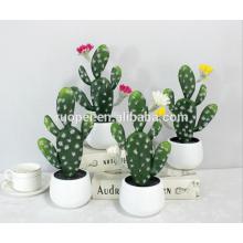 mini plantas suculentas / home decoration mini cactus bonsai