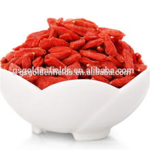 the ningxia goji berry dried goji berry
