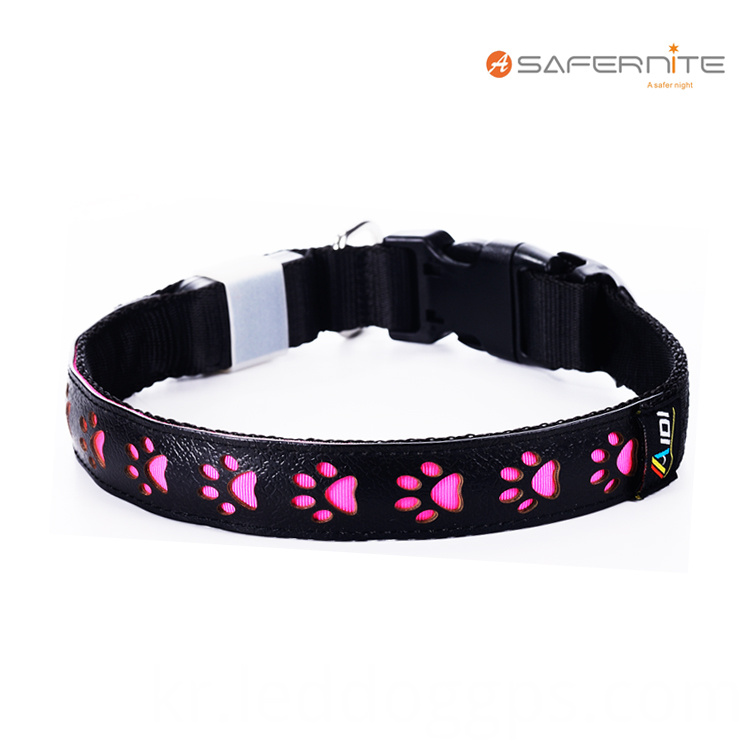 Night Safety Glow Dog Collar