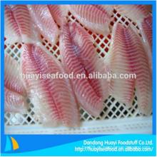 Großhandel Tilapia ganze Fische Tilapia Filet gefrorenen Fisch