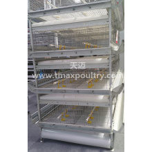 H Type Automatic Broiler Equipment