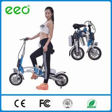 Le vélo électrique pliable 36v 250w 12inch le plus vendu