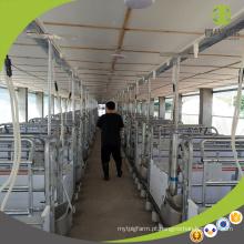 Gaiola de porco galvanizada certificada dos gados de alta qualidade do equipamento da exploração agrícola de porco