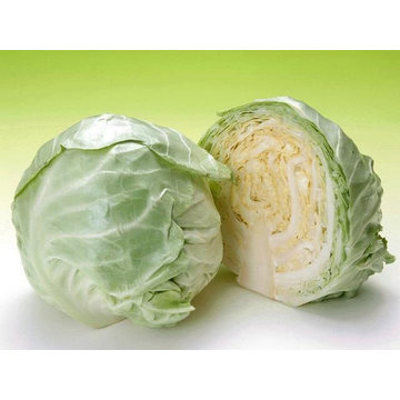new fresh cabbage