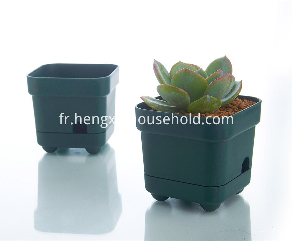 Pots for Plants Plastic